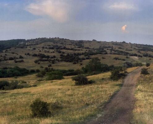 Suki Trail terepfutás